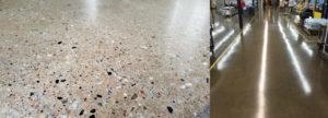 polished concrete case study